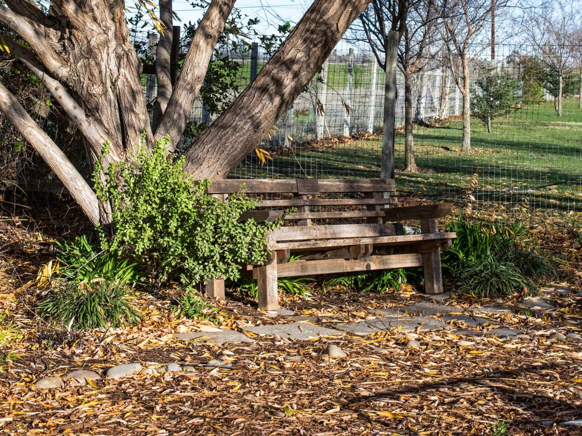 r-d_willow-bench_810_7576