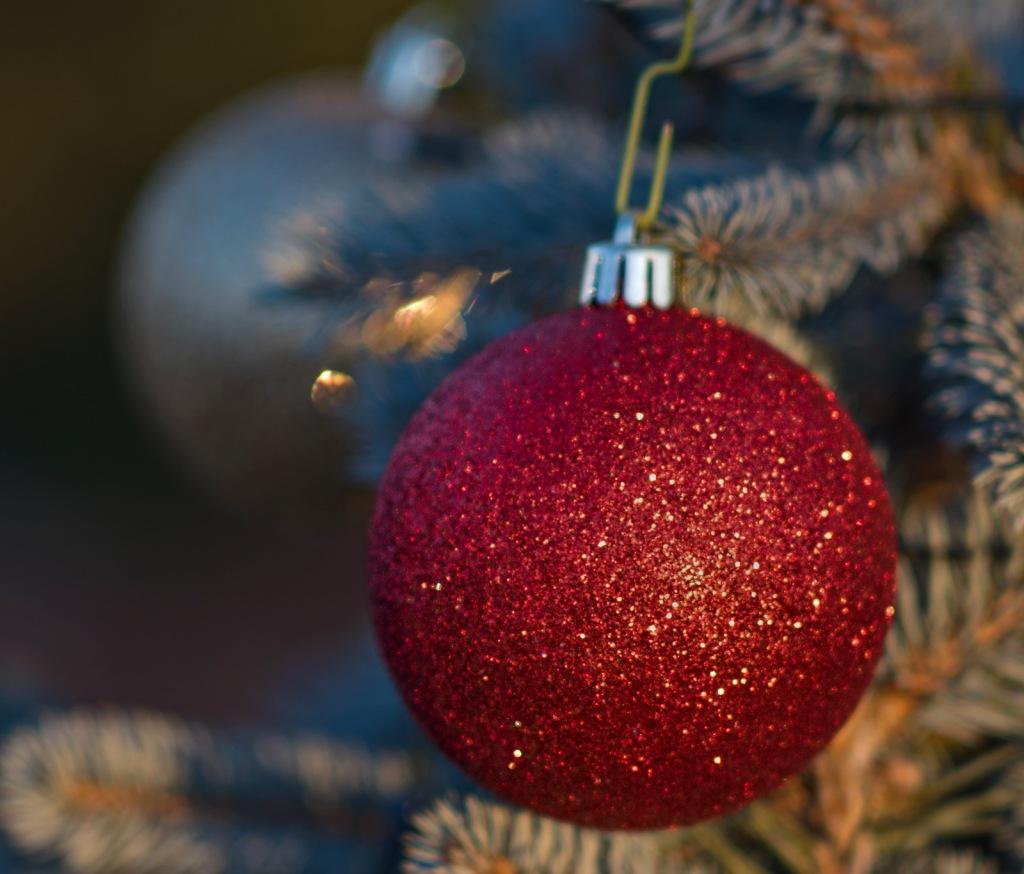 _r-d_ornaments_810_9343