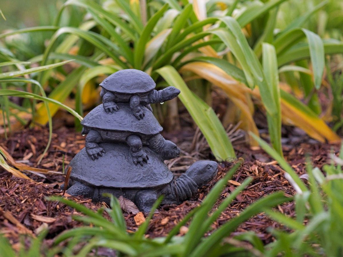 _r-d_turtle_810_1500