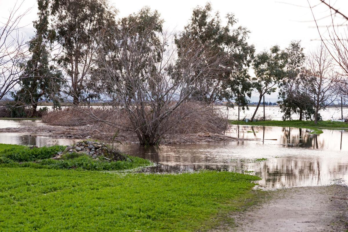 rd_8107852-pond_flood