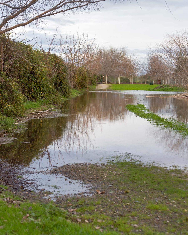 rd_8108024-pond_flood